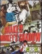 Snake Fist vs The Dragon (1980)