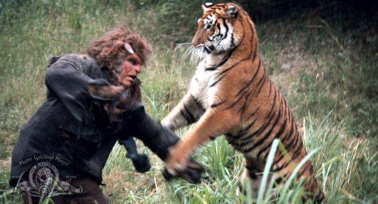 Bob Ozman fighting a tiger as Bullman in The Island of Dr. Moreau