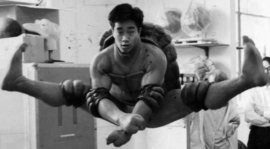 Larry Lam Ninja Turtle