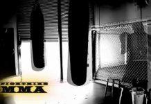FightMike MMA