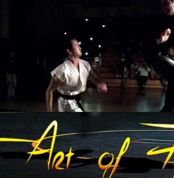 The Art of Fighting Film