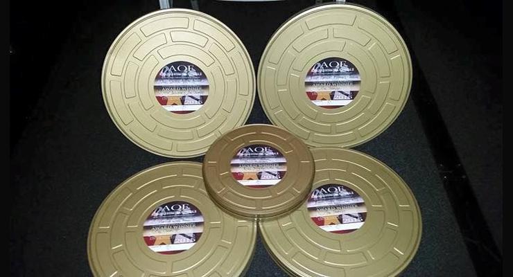 Assassin X Action On Film Awards