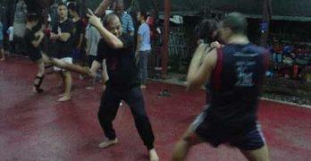 Muay Thai Chaiya Fundamentals on The Art of Fighting